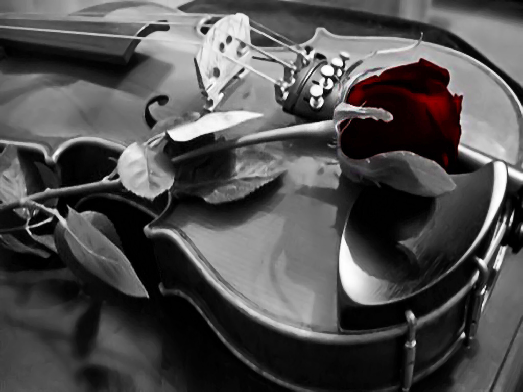 Violin Wallpaper | pure musician